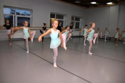 sekcje-balet 04