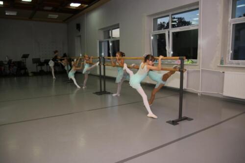 sekcje-balet 11