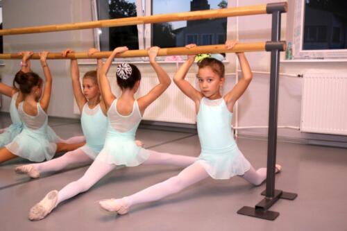 sekcje-balet 12