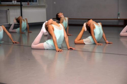 sekcje-balet 17